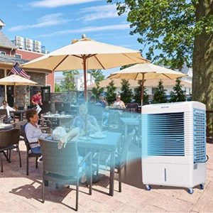 Best Evaporative Coolers Reviews: Top 10 Swamp Cooler Guide [2020]